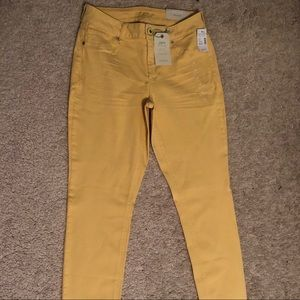 Maurice's NWT Jeggings